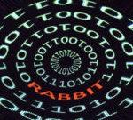 Badrabbit-300x135-150x135